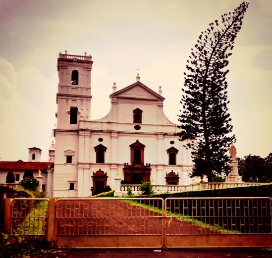 Blog - Basilica