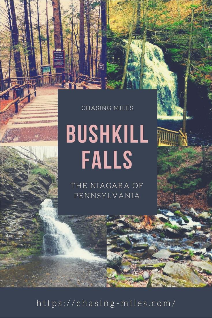 Bushkill Pin