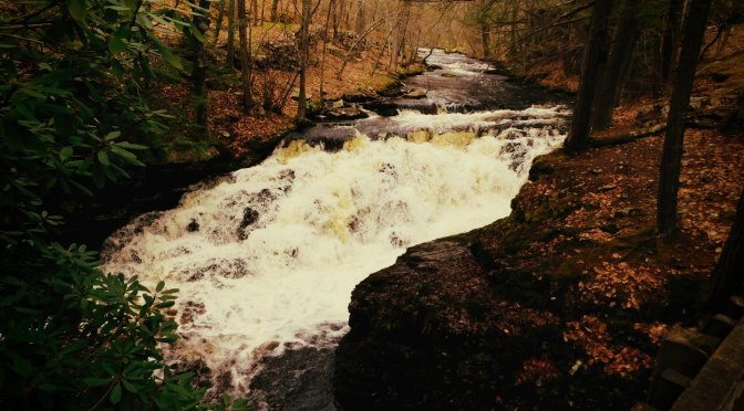Penchant for Waterfalls – Bushkill